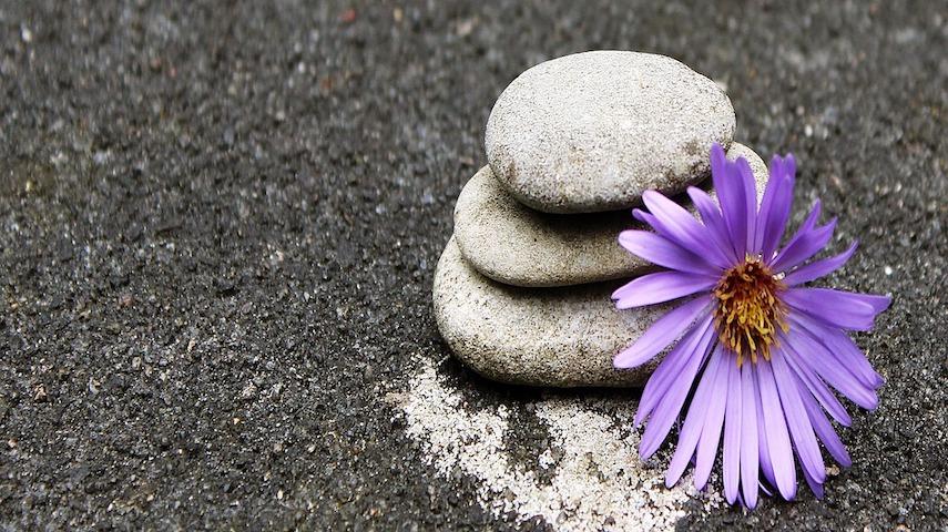 El Arte De Meditar Conscientemente